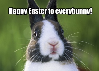 Funny-Easter-Images